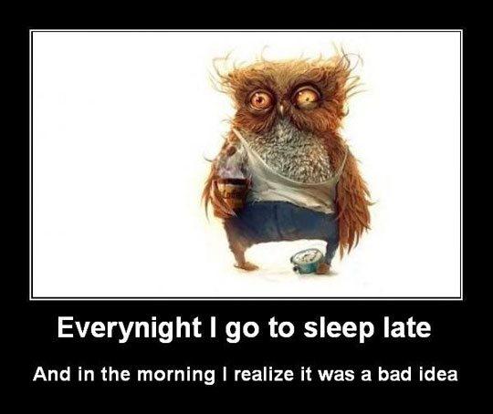 funny-owl-hangover-face2