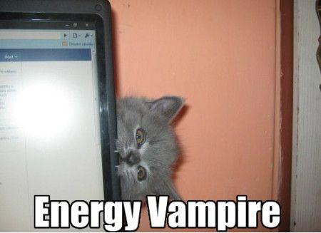 Cat energy vampire