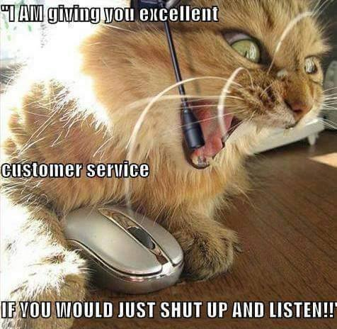Cat customer service