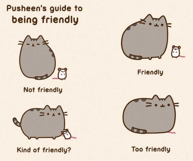 Pusheens guide to being friendly