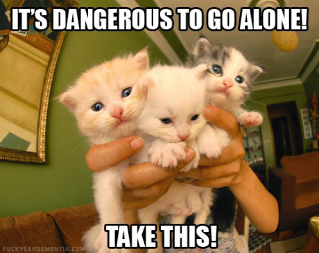 Too-dangerous-to-go-alone-cats