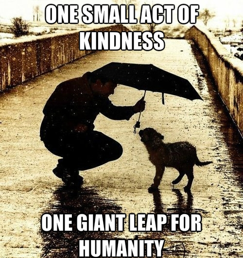 acts-of-kindness_o_2175695